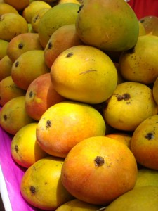 Mangoes go on a decline hit by Global warming