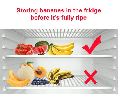Fruits And Vegetables Storage Method Fruits Facts