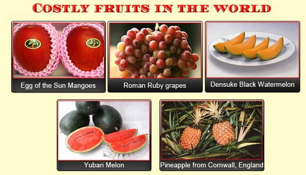Costly Fruits