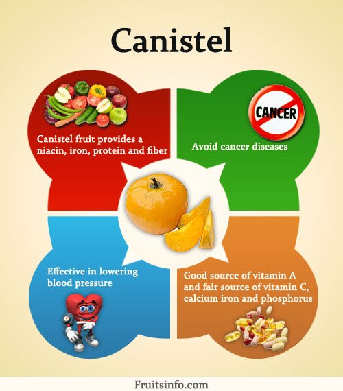 canistel fruit what fruits are healthy