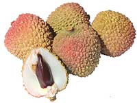 Facts-of-Lychee-Fruits