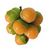 genip-Coconut-Tropical-Fruit