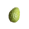 guanabana-Tropical-Fruit