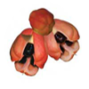 ackee-tropical-fruit
