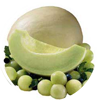honeydew-tropical-fruit
