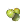 lucuma-tropical-fruit