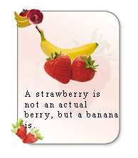 add fruit facts widget