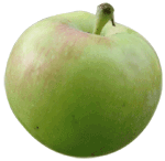Green star apple