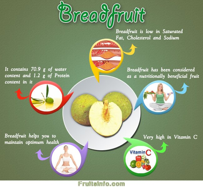 bread fruit healthy fruit salad dessert