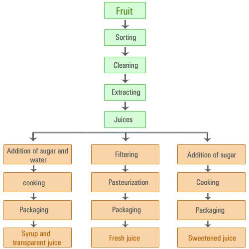 Operation of making fruit juices