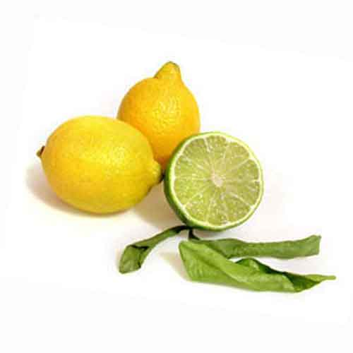 how to add lime juice phosphorus to plants