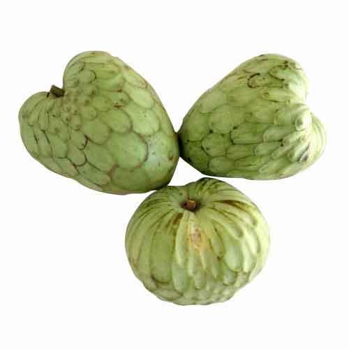 fruit valley cherimoya fruit