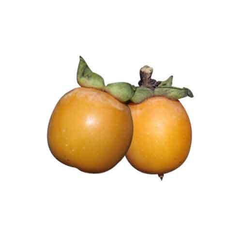 Date plum   Nutrition facts-Date plum