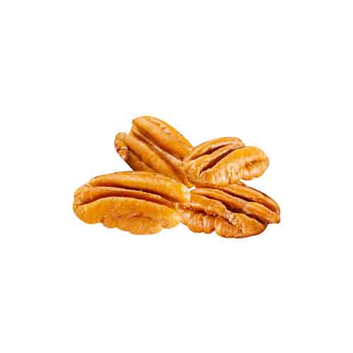 Pecan Tree Facts For Kids