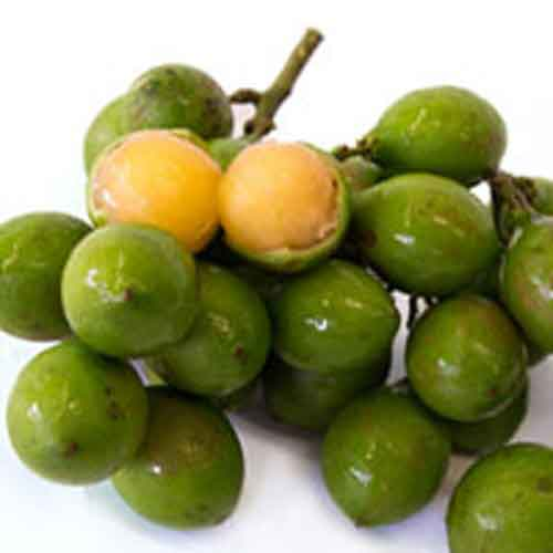 Spanish lime | Nutrition facts-Spanish lime | Health benefits