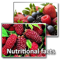 loganberry nutritional facts
