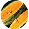 orangelo fruit