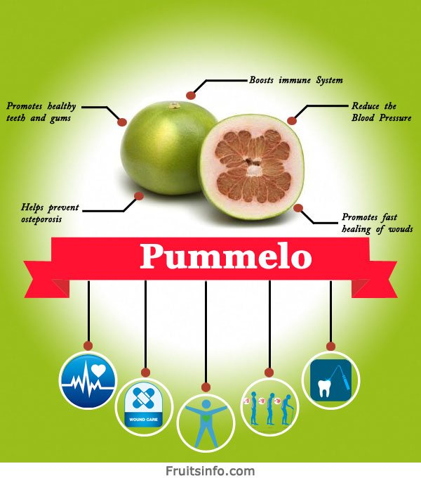 Pummelo infographics