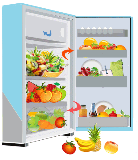 Storage Of Fruits And Vegatables